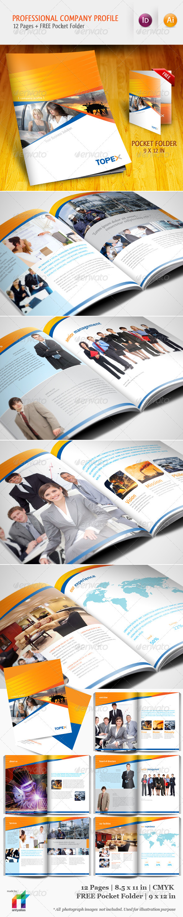 Professional Company Profile Brochure Template