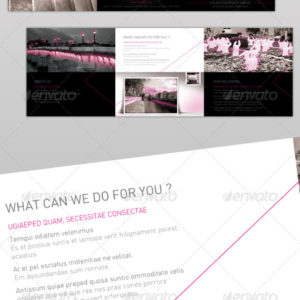 Brochure Design Professional