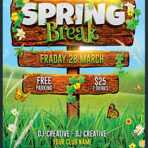 Spring Break / Summer Party Flyer