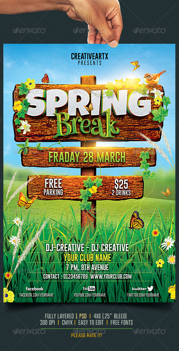 spring break    summer party flyer