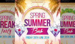 Summer : Spring Party Flyer